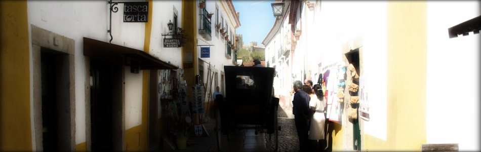 Fatima Private Tours - Obidos