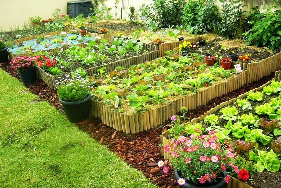 hortaecologica